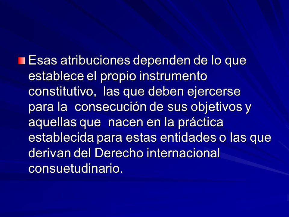 Esas atribuciones dependen de lo que establece el propio instrumento constitutivo, las que deben ejercerse para la consecución de sus objetivos y aquellas que nacen en la práctica establecida para estas entidades o las que derivan del Derecho internacional consuetudinario.