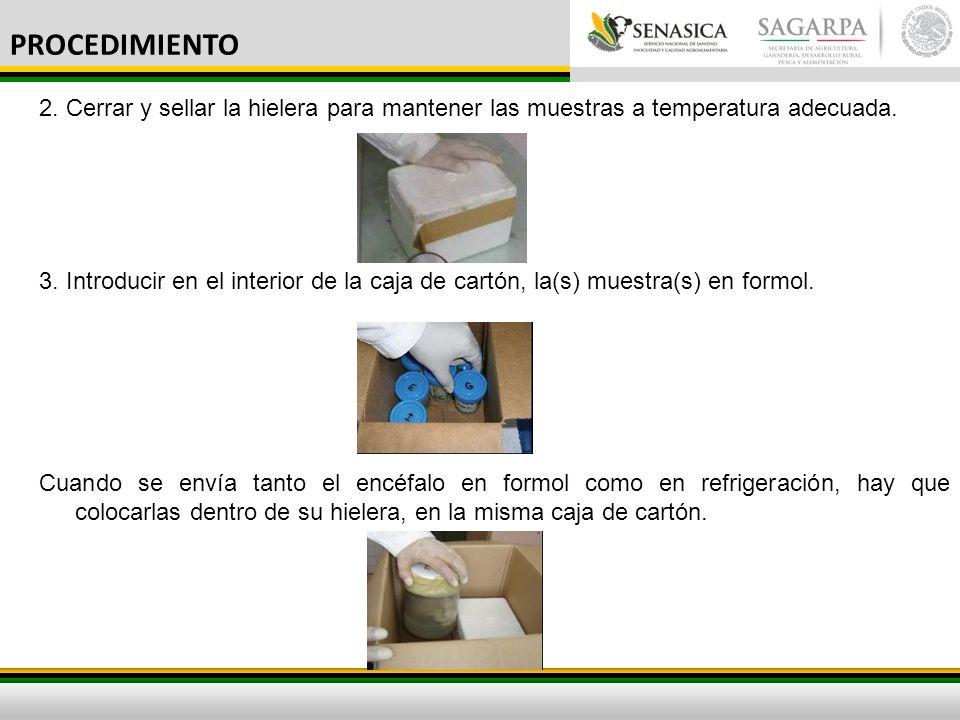 PROCEDIMIENTO 2. Cerrar y sellar la hielera para mantener las muestras a temperatura adecuada.