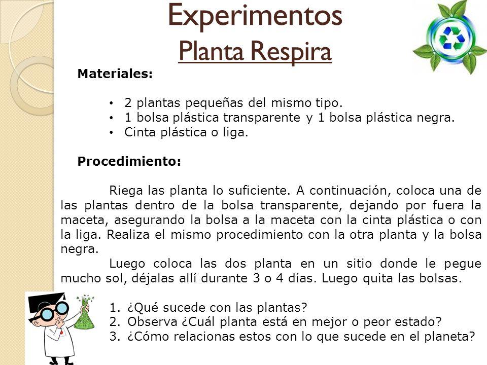 Experimentos Planta Respira Materiales: