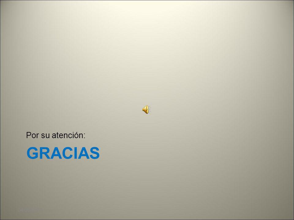 Por su atención: GRACIAS 04/08/2010