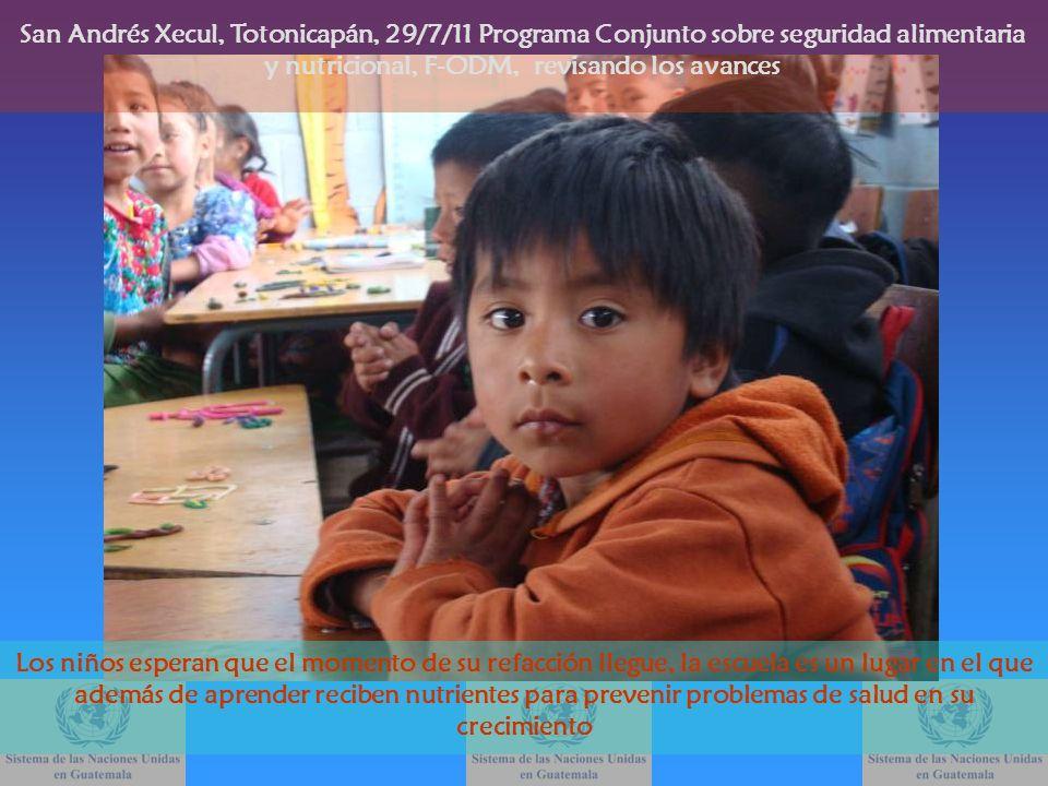 San Andrés Xecul, Totonicapán, 29/7/11 Programa Conjunto sobre seguridad alimentaria y nutricional, F-ODM, revisando los avances