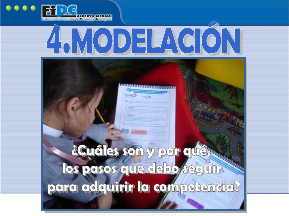 MODELACIÓN 4. ¿Cuáles son y por qué, los pasos que debo seguir
