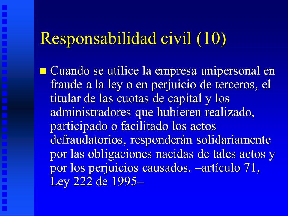 Responsabilidad civil (10)