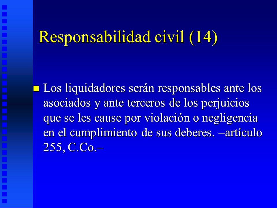 Responsabilidad civil (14)
