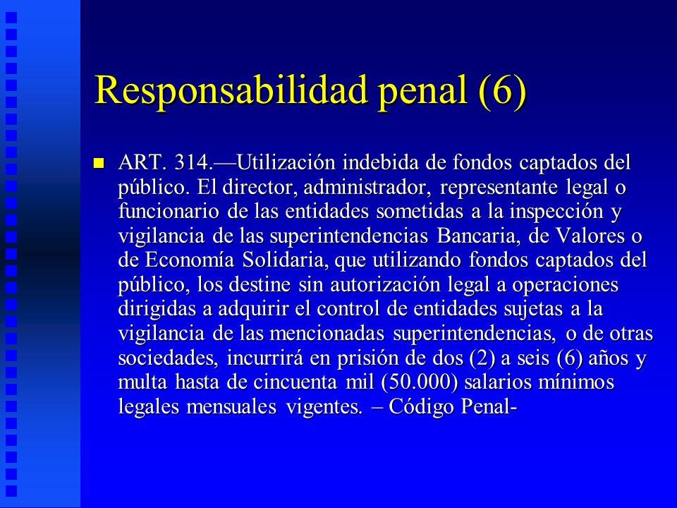 Responsabilidad penal (6)