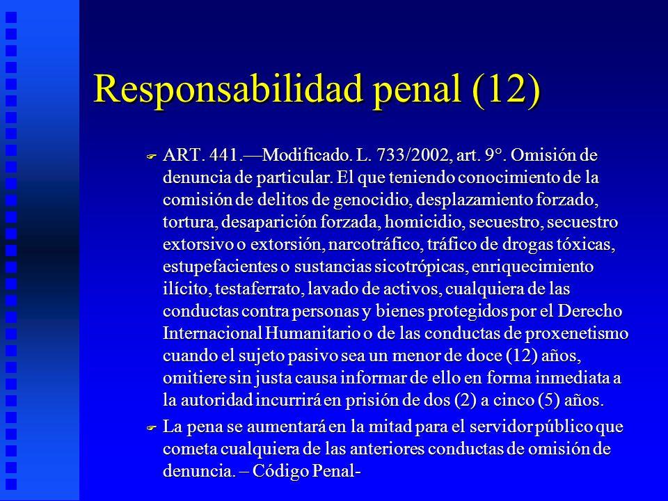 Responsabilidad penal (12)