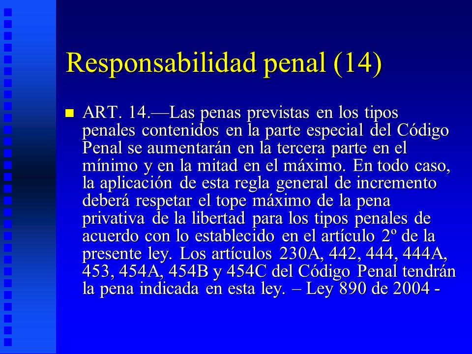 Responsabilidad penal (14)
