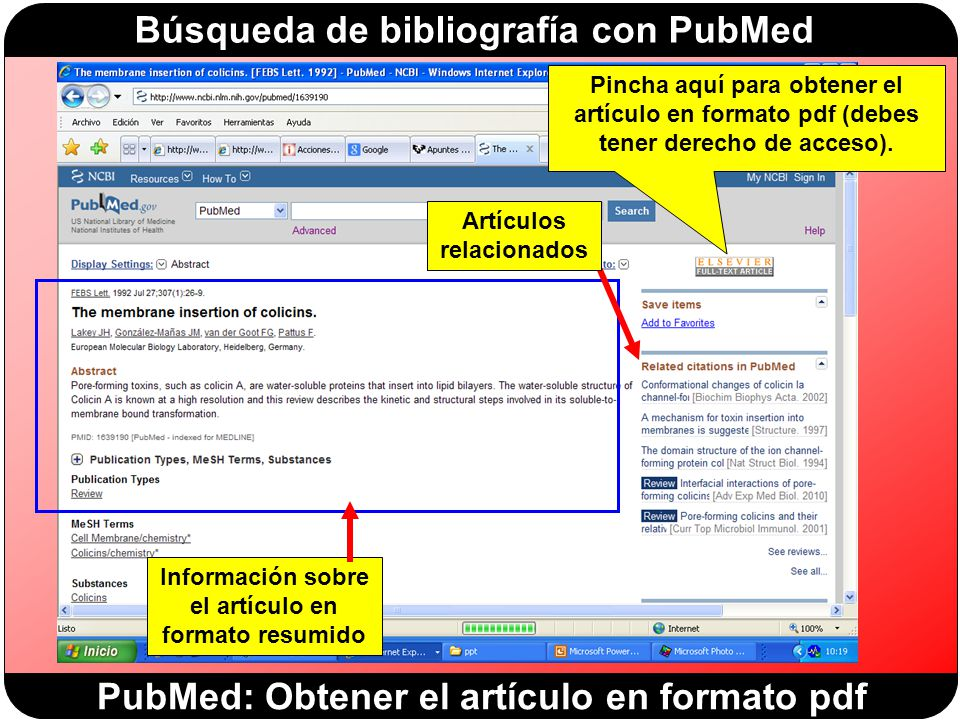 PubMed: Obtener el artículo en formato pdf