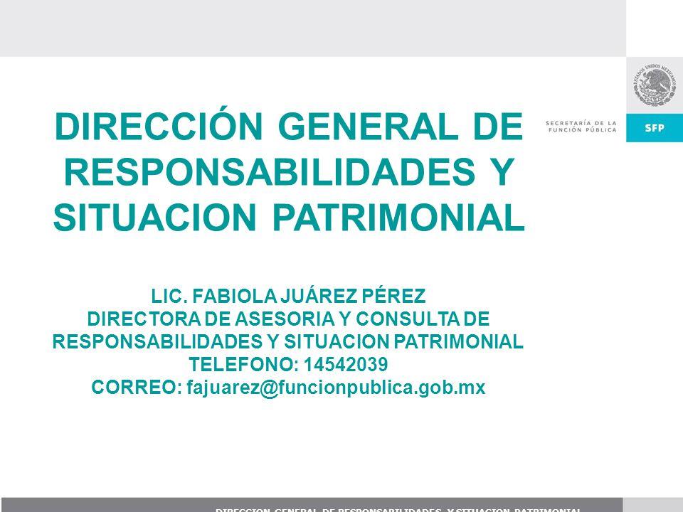 DIRECCIÓN GENERAL DE RESPONSABILIDADES Y SITUACION PATRIMONIAL LIC