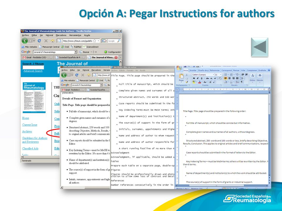 Opción A: Pegar Instructions for authors