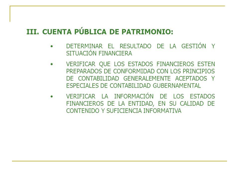 CUENTA PÚBLICA DE PATRIMONIO:
