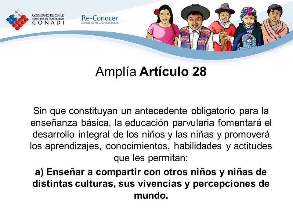 Amplía Artículo 28