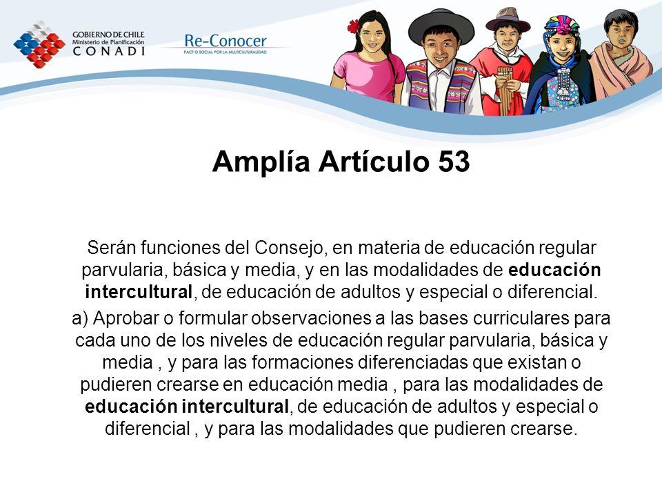Amplía Artículo 53