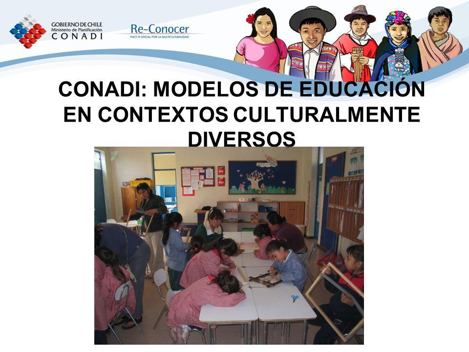 CONADI: MODELOS DE EDUCACIÓN EN CONTEXTOS CULTURALMENTE DIVERSOS