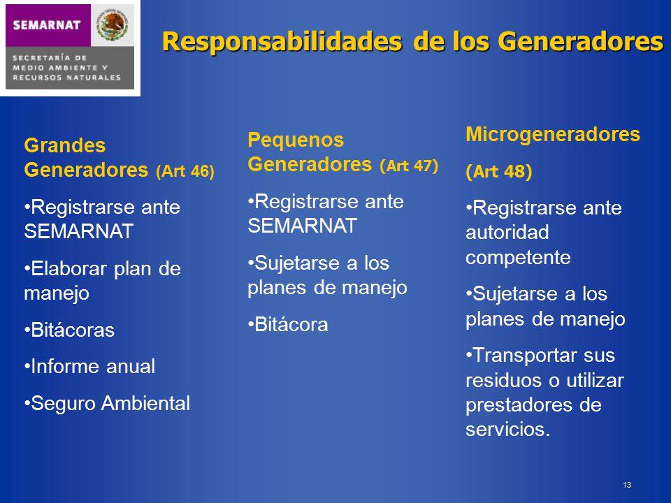 Responsabilidades de los Generadores