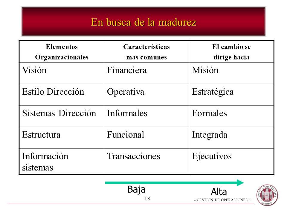 En busca de la madurez Visión Financiera Misión Estilo Dirección