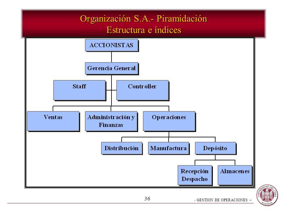 Organización S.A.- Piramidación Estructura e índices