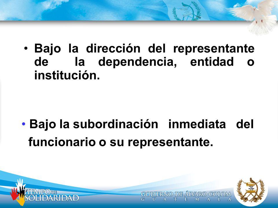 Bajo la dirección del representante de la dependencia, entidad o institución.