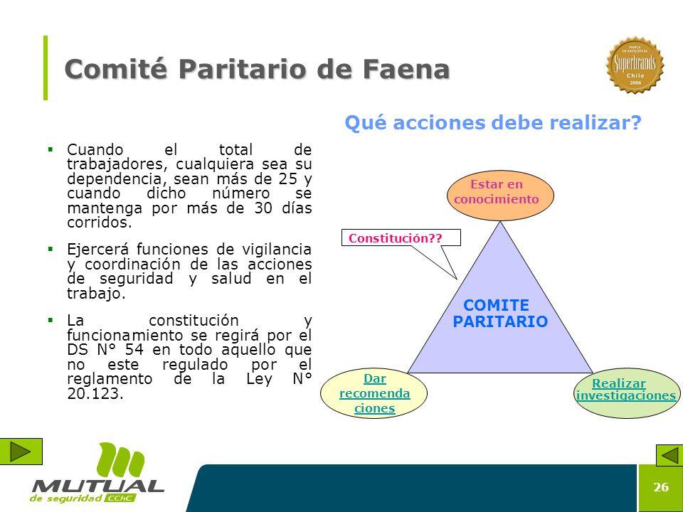 Comité Paritario de Faena