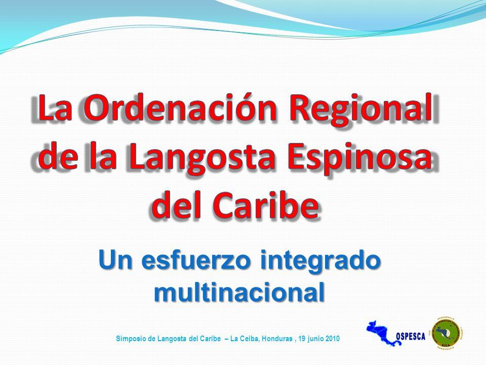 La Ordenación Regional de la Langosta Espinosa del Caribe
