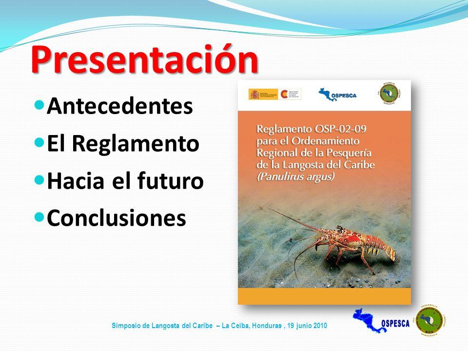 Presentación Antecedentes El Reglamento Hacia el futuro Conclusiones