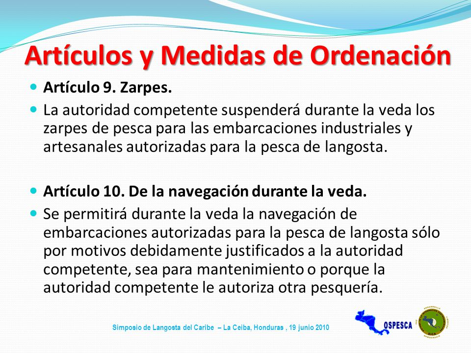 Artículos y Medidas de Ordenación