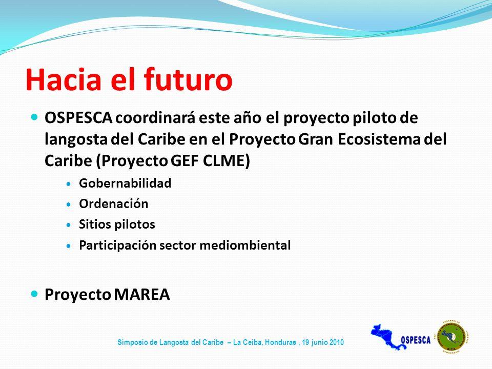 Hacia el futuro OSPESCA coordinará este año el proyecto piloto de langosta del Caribe en el Proyecto Gran Ecosistema del Caribe (Proyecto GEF CLME)