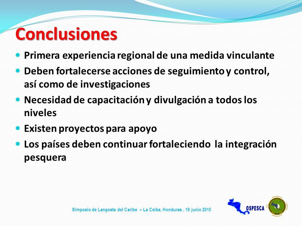 Conclusiones Primera experiencia regional de una medida vinculante