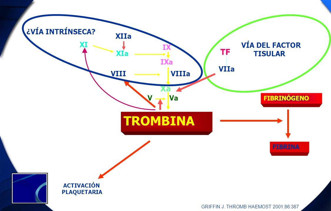 TROMBINA TF Xa ¿VÍA INTRÍNSECA XIIa XI VÍA DEL FACTOR TISULAR IX VIIa