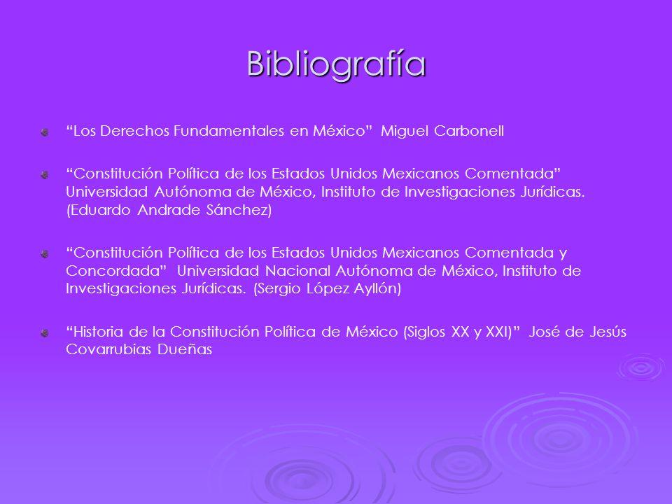 Bibliografía Los Derechos Fundamentales en México Miguel Carbonell