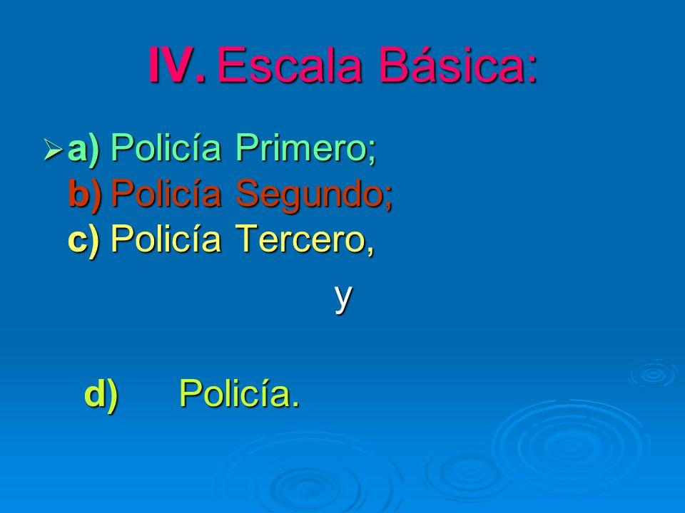 IV. Escala Básica: a) Policía Primero; b) Policía Segundo; c) Policía Tercero, y d) Policía.
