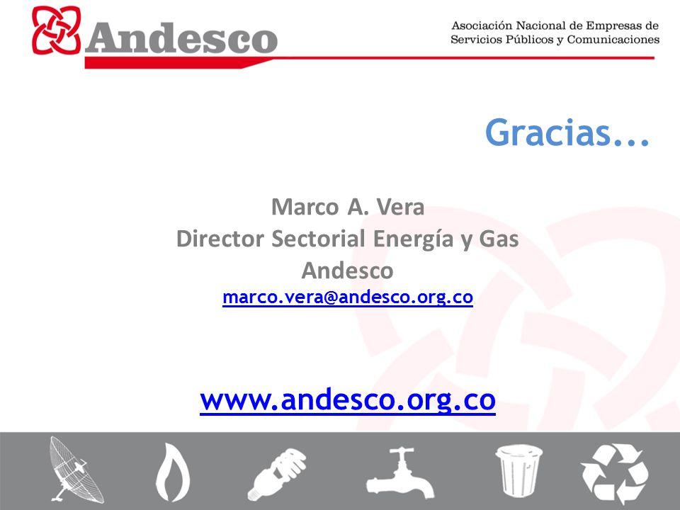 Director Sectorial Energía y Gas