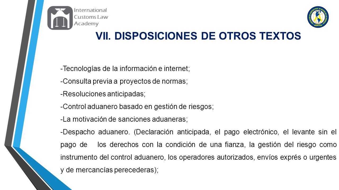 VII. DISPOSICIONES DE OTROS TEXTOS
