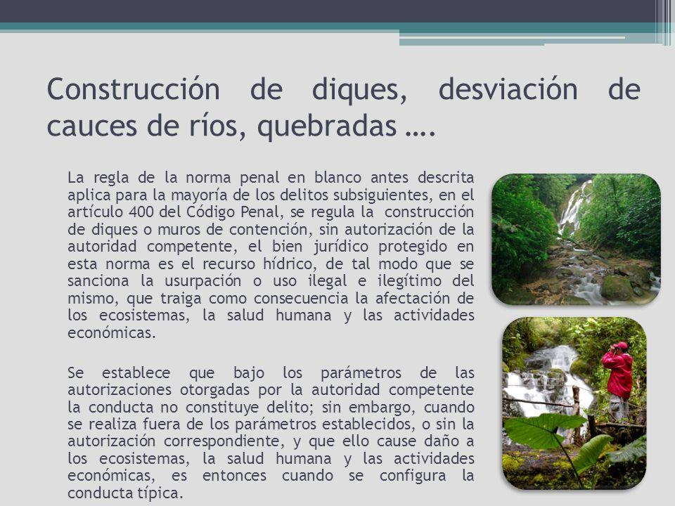 Construcción de diques, desviación de cauces de ríos, quebradas ….