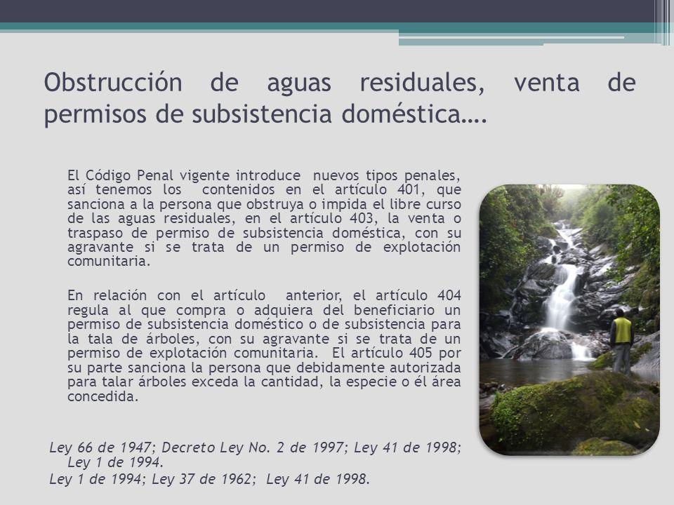 Obstrucción de aguas residuales, venta de permisos de subsistencia doméstica….
