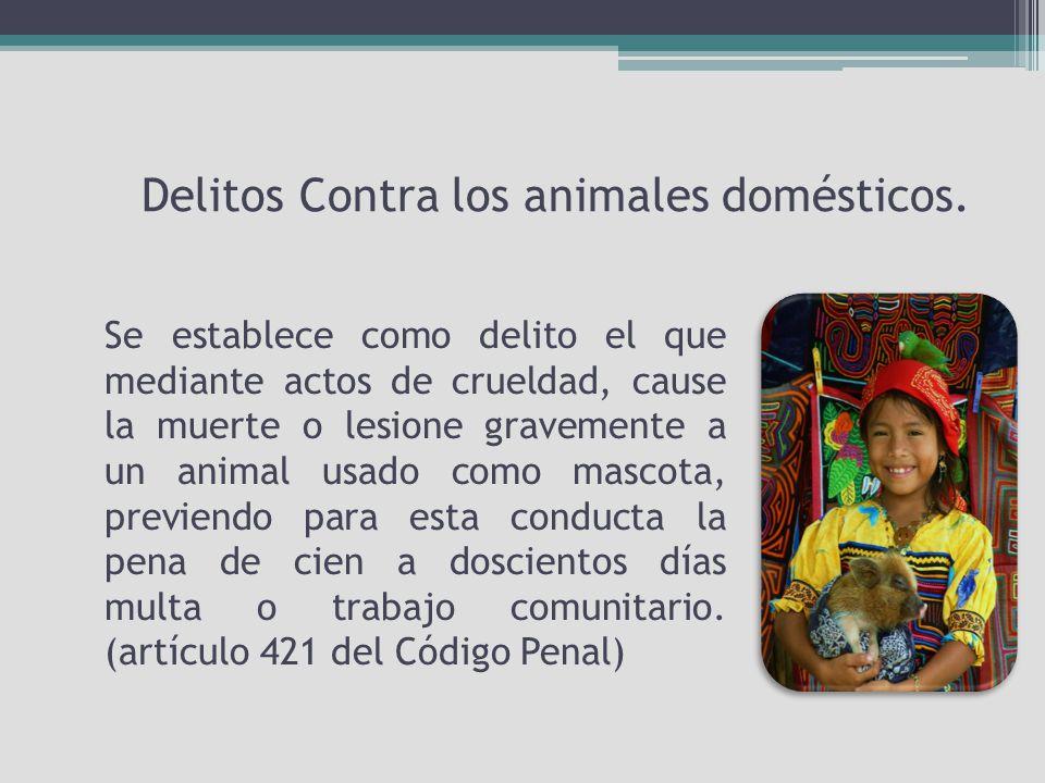 Delitos Contra los animales domésticos.