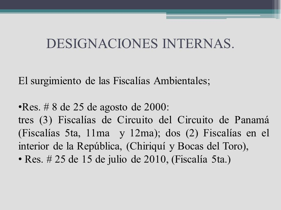 DESIGNACIONES INTERNAS.