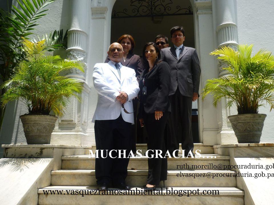 MUCHAS GRACIAS…. www.vasquezramosambiental.blogspot.com