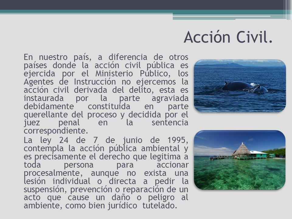 Acción Civil.