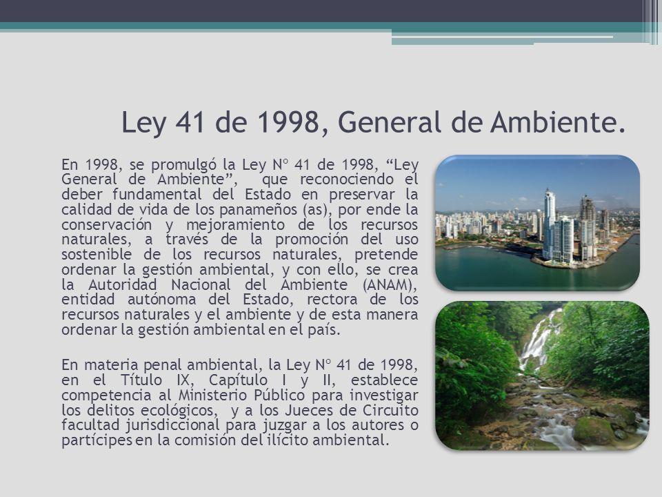 Ley 41 de 1998, General de Ambiente.