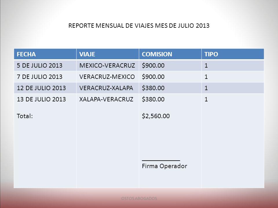 REPORTE MENSUAL DE VIAJES MES DE JULIO 2013