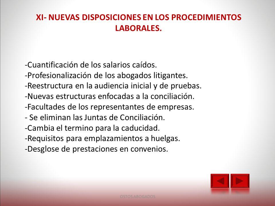 XI- NUEVAS DISPOSICIONES EN LOS PROCEDIMIENTOS LABORALES.