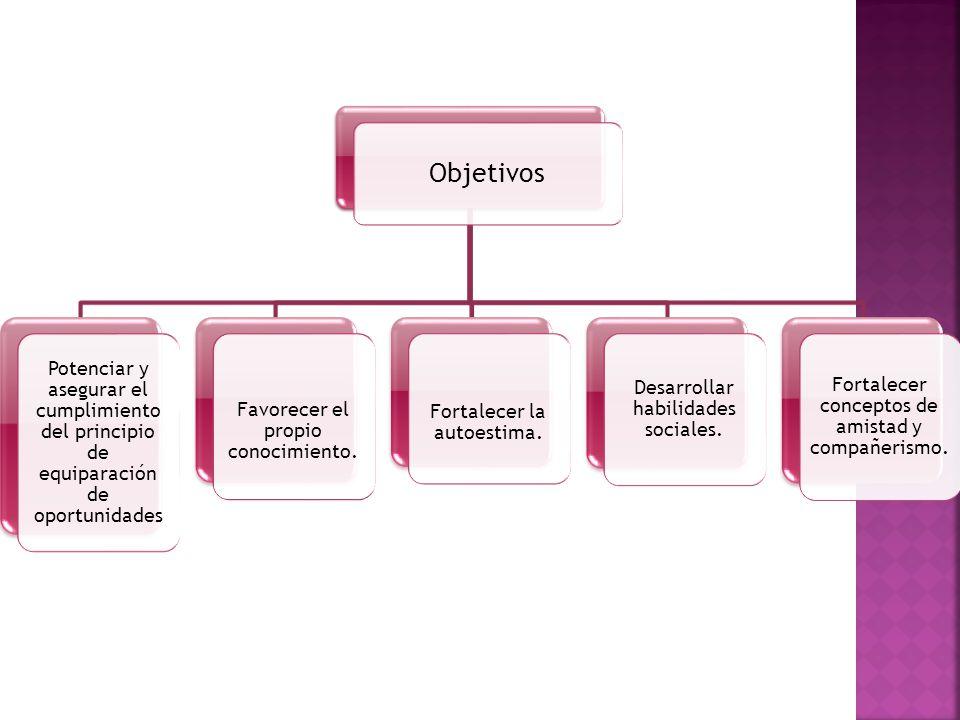 Objetivos Potenciar y asegurar el cumplimiento del principio de equiparación de oportunidades. Favorecer el propio conocimiento.