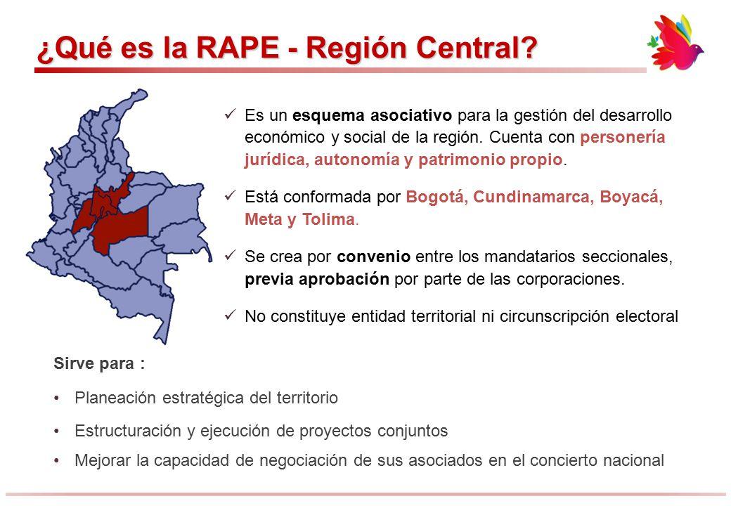 ¿Qué es la RAPE - Región Central