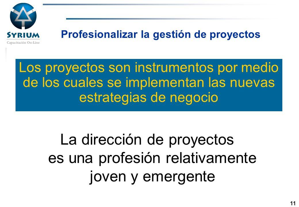 Profesionalizar la gestión de proyectos