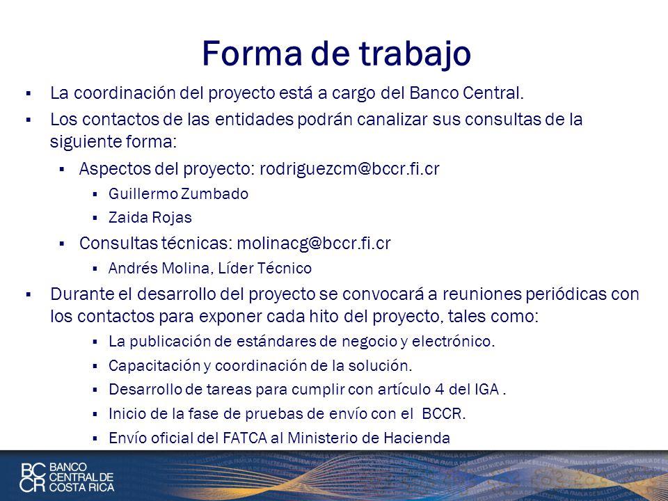 Forma de trabajo La coordinación del proyecto está a cargo del Banco Central.