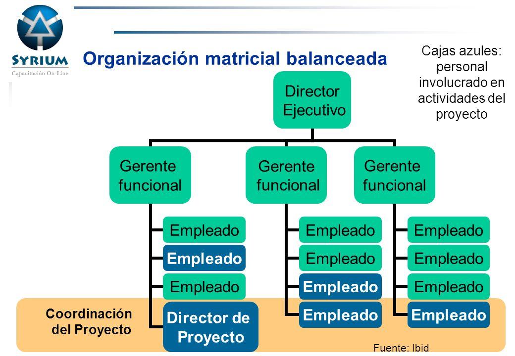 Organización matricial balanceada