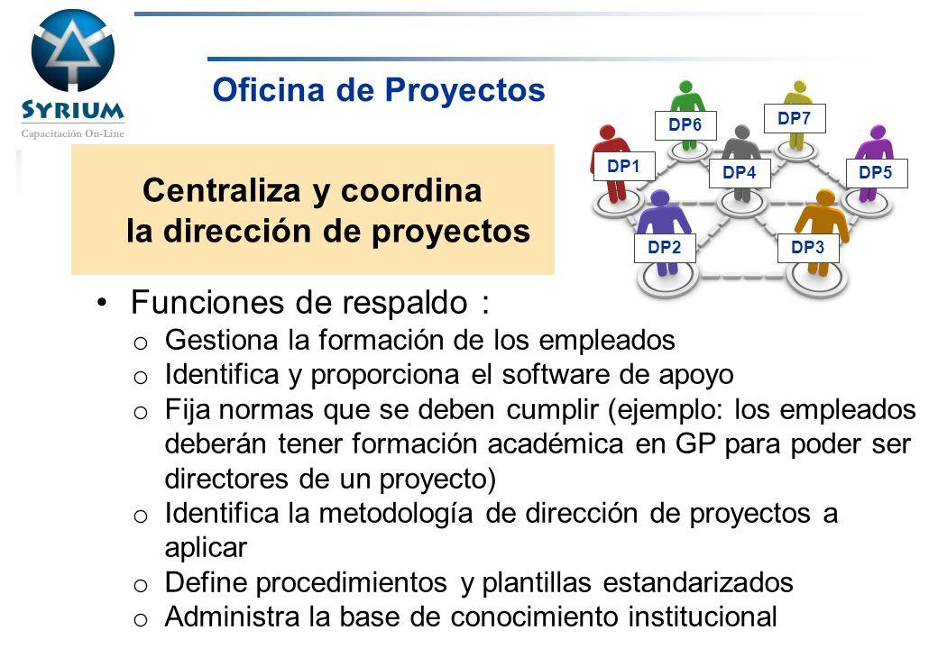 Centraliza y coordina la dirección de proyectos
