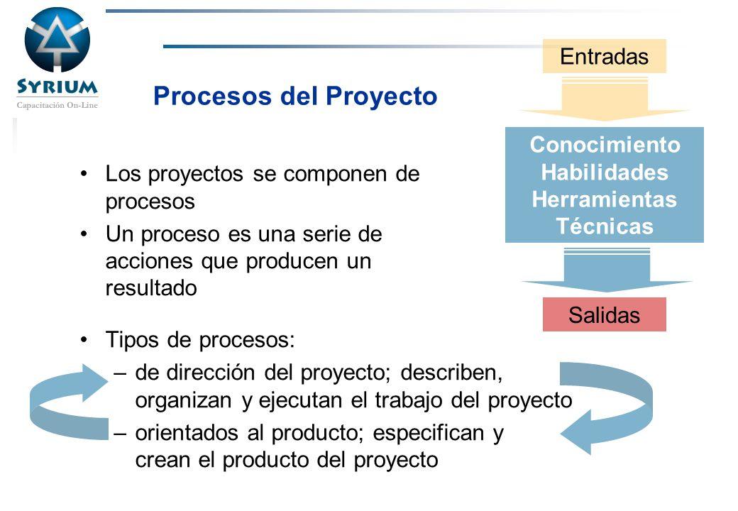 Procesos del Proyecto Entradas Conocimiento Habilidades