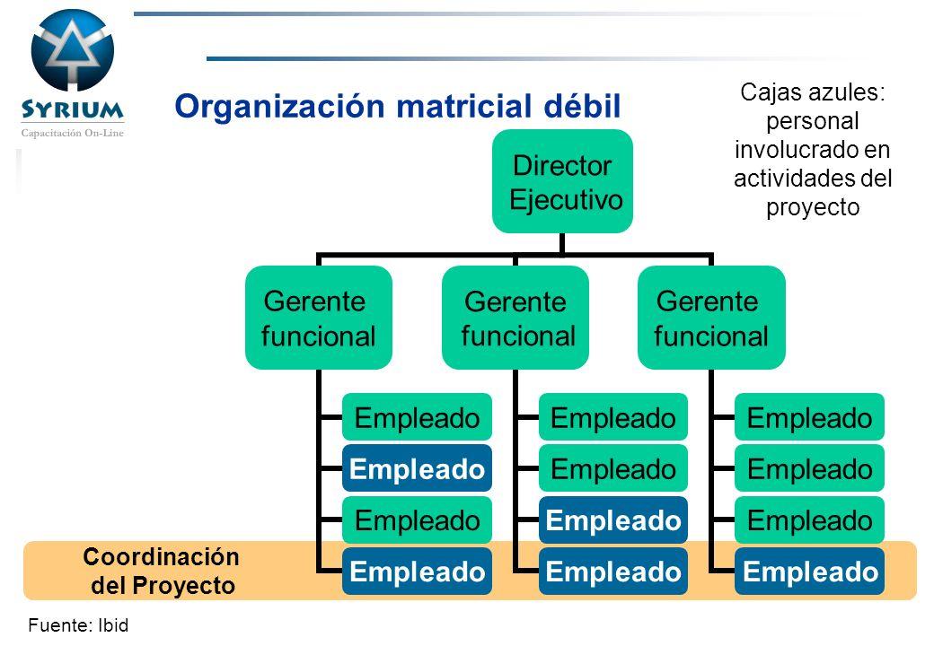 Organización matricial débil